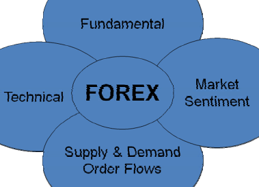 Forex 4 noobs guide